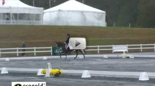 Boyd Martin and Neville Bardos Dressage